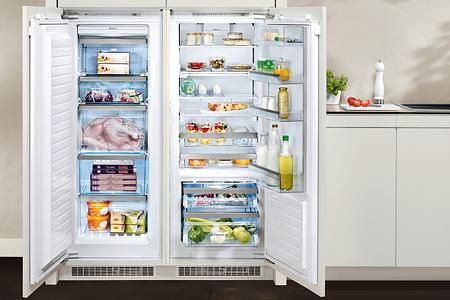 Профессиональный ремонт одно- и двухстворчатых холодильников Neff