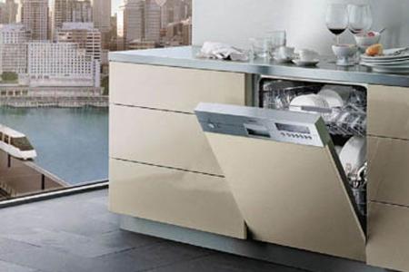 Мы более 8 лет отлично разбираемся в нюансах посудомоечных машин Siemens и осуществляем ремонт